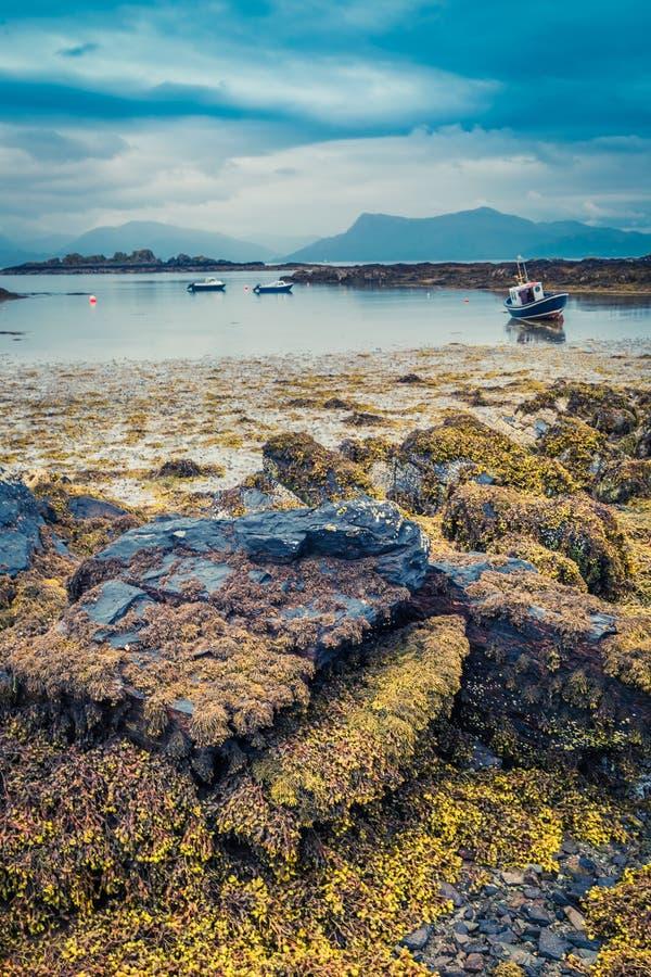 Costa durante la bajamar y naves encallado en Escocia fotos de archivo libres de regalías