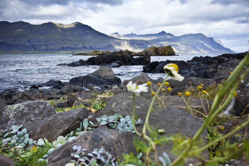 Costa em Islândia imagens de stock royalty free