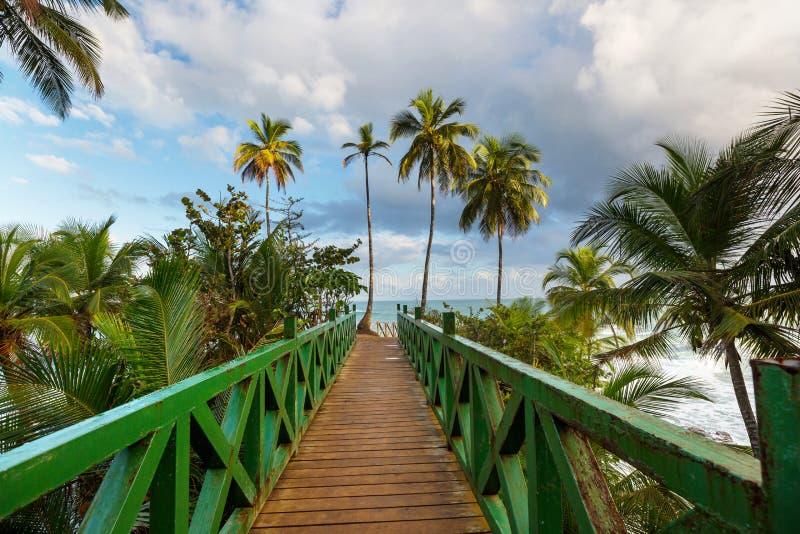 Costa em Costa Rica fotos de stock royalty free
