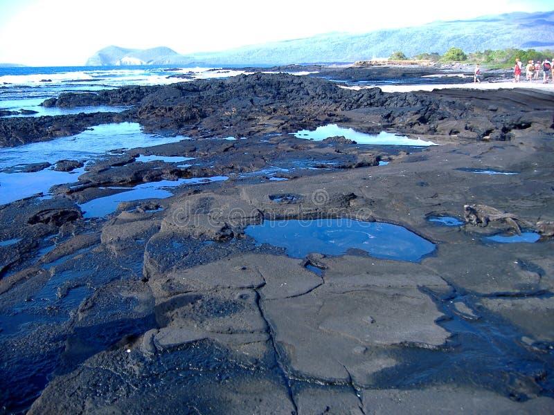 Costa en las islas de las Islas Gal3apagos imagen de archivo libre de regalías