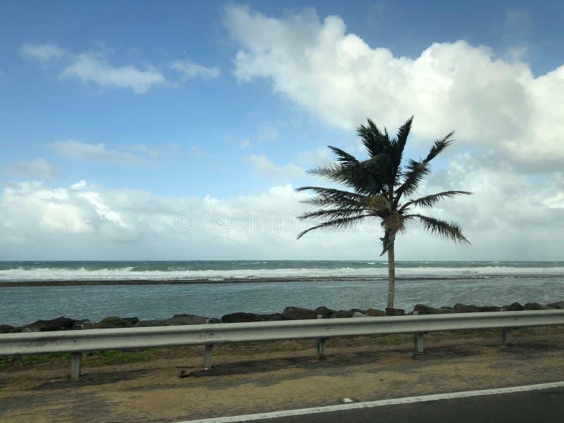 Costa costa en Puerto Rico imagen de archivo libre de regalías