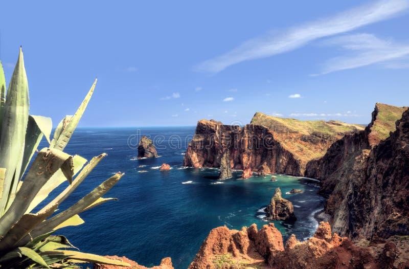 Costa este de la isla de Madeira, Ponta de Sao Loure imagen de archivo