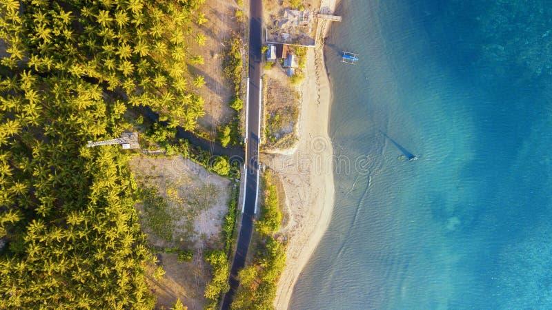 Costa hermosa con el árbol de coco en Lombok fotos de archivo libres de regalías