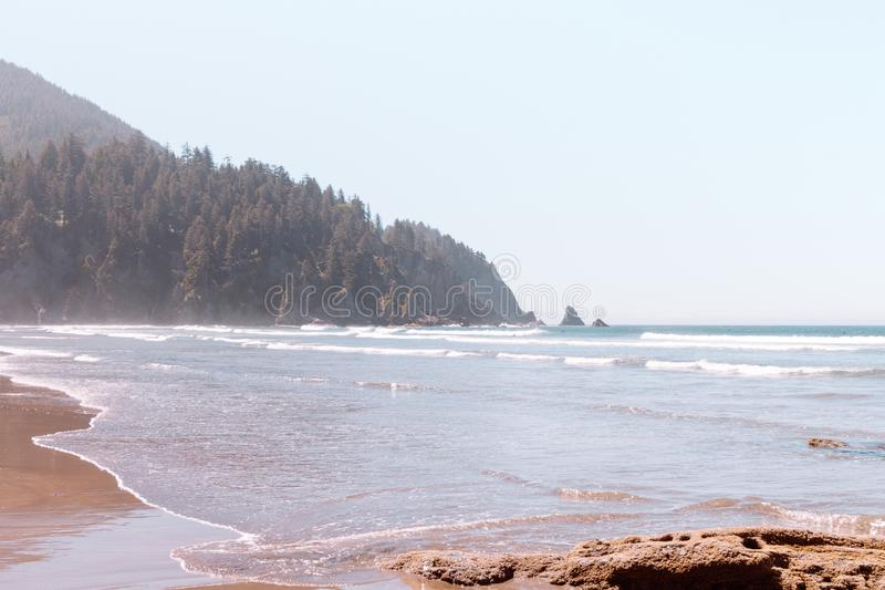 Costa hermosa del mar con un bosque en una colina en el fondo fotos de archivo libres de regalías