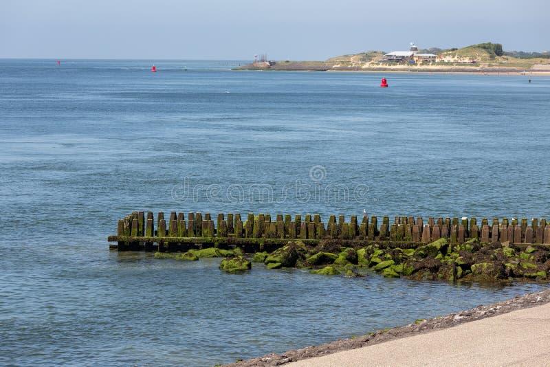 Costa holandesa cerca de Vlissingen con el embarcadero y la playa de madera foto de archivo libre de regalías