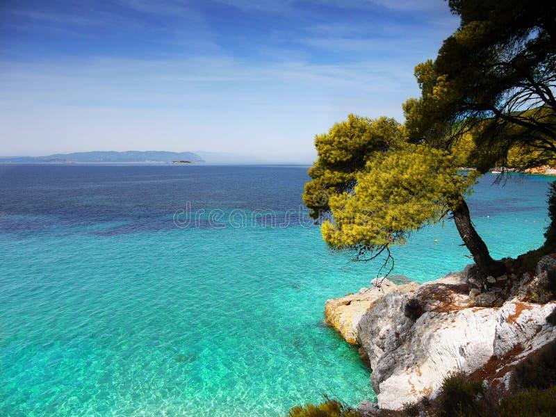 Costa, ilha de Skopelos foto de stock