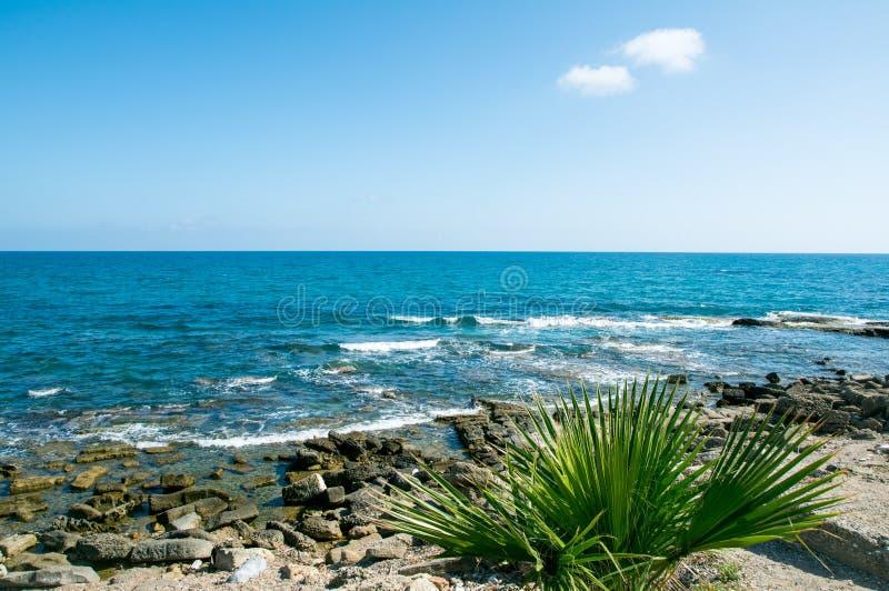 Costa mediterrânea de Viareggio imagem de stock royalty free