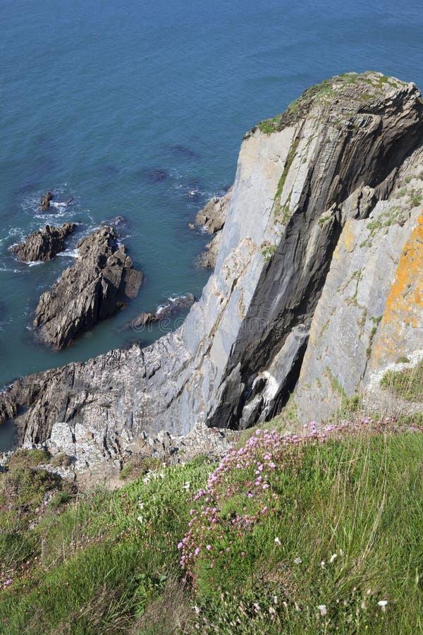 Costa na ilha do Burgh, Devon fotos de stock