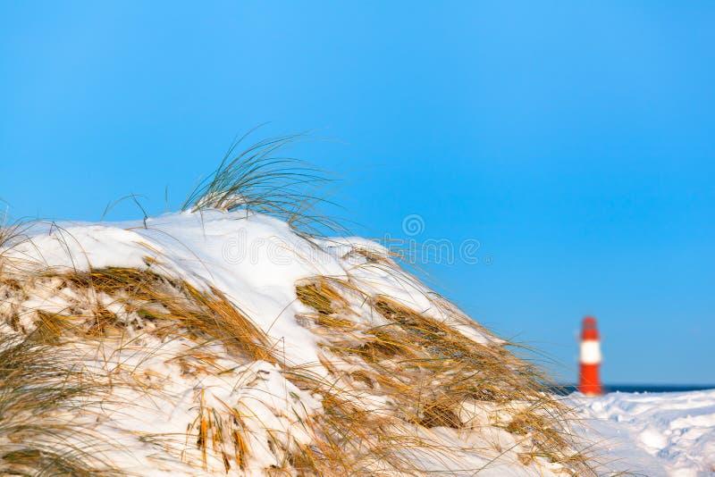 Costa Nevado en el mar Báltico foto de archivo