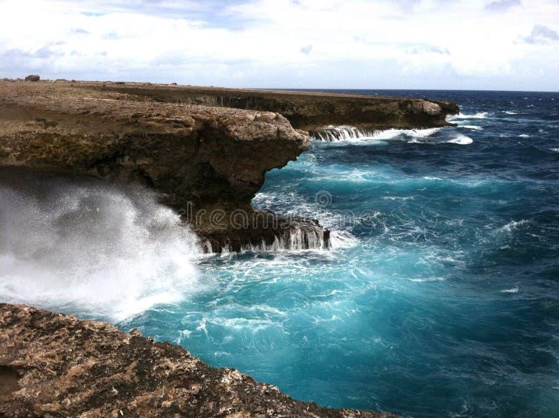Costa norte Bonaire foto de stock royalty free