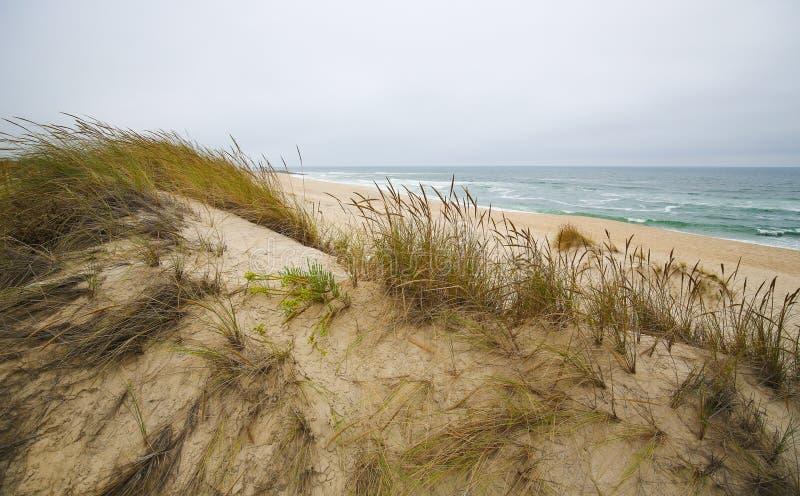 Costa Nova, Aveiro, Centro region, Portugal. Sand dunes at Costa Nova, a famous beach near Aveiro, Centro, Portugal stock images