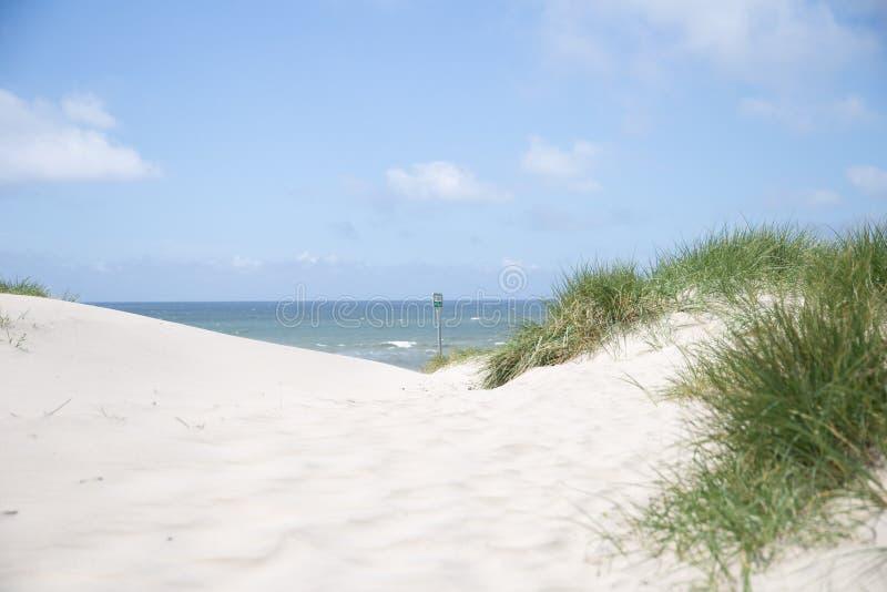 A costa ocidental de Dinamarca imagens de stock royalty free
