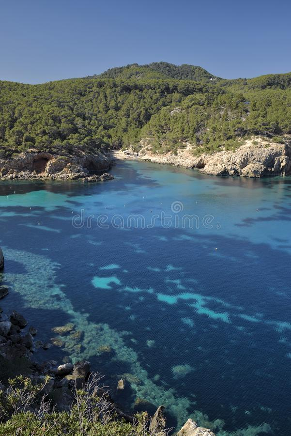 Costa perto do porto de Sant Miquel, Ibiza fotos de stock royalty free