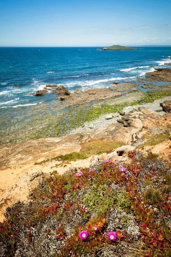 Costa Portogallo immagini stock libere da diritti