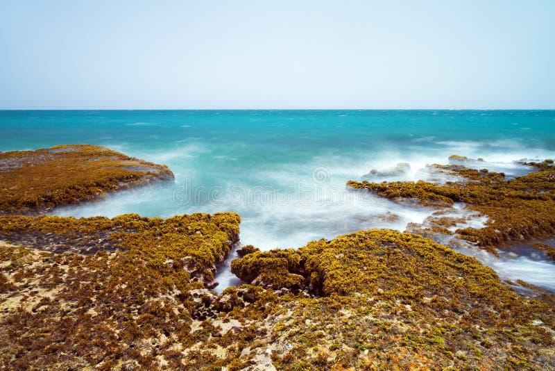Costa Puerto Rico fotografía de archivo