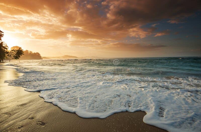 Costa in Costa Rica fotografia stock libera da diritti