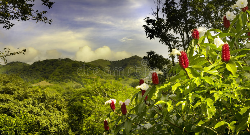 Costa rica stock images