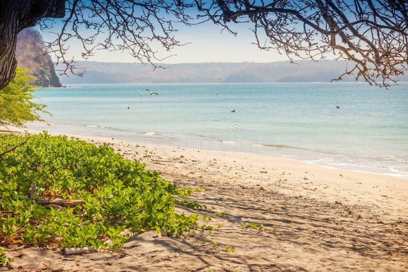 Download Costa Rica stock afbeelding. Afbeelding bestaande uit costa - 39114027