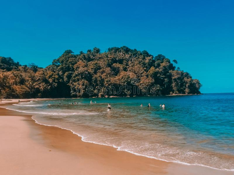 Costa Rica Beach. Water, trees royalty free stock images