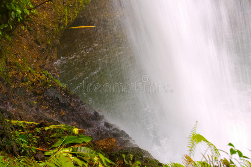 Costa Rica Catarata La Paz stock photography