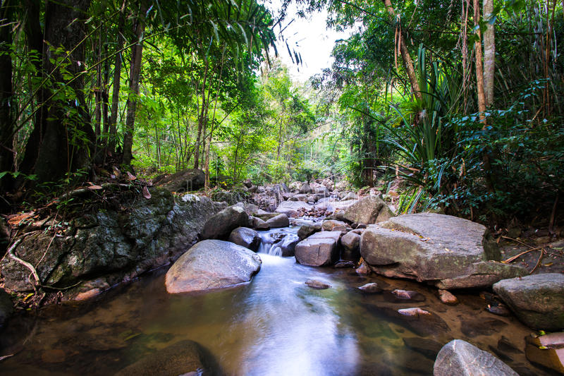 Costa Rica Nature Background Travel Destinations Rio CelesteCosta Rica Nature Background Travel Destinations Rio Celeste. Costa Rica Nature Background Travel royalty free stock photo