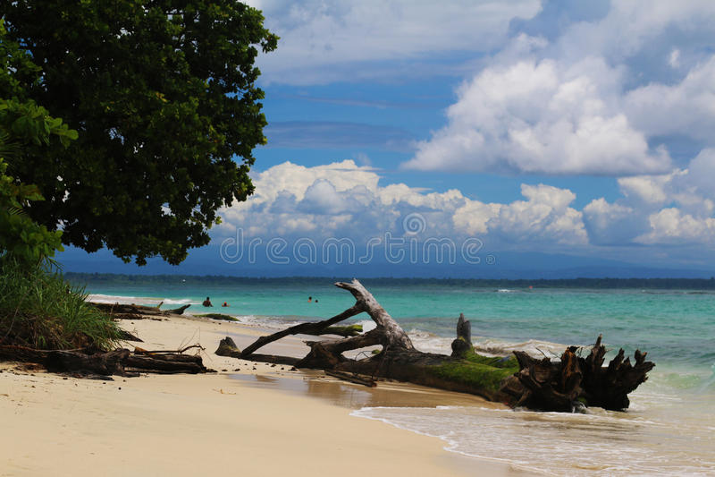 Costa Rica och Panama natur och landskap Amerika lopp wanderlust royaltyfri bild