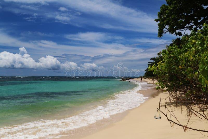 Costa Rica och Panama natur och landskap Amerika lopp wanderlust royaltyfri foto