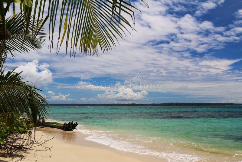 Costa Rica och Panama natur och landskap Amerika lopp wanderlust arkivfoto