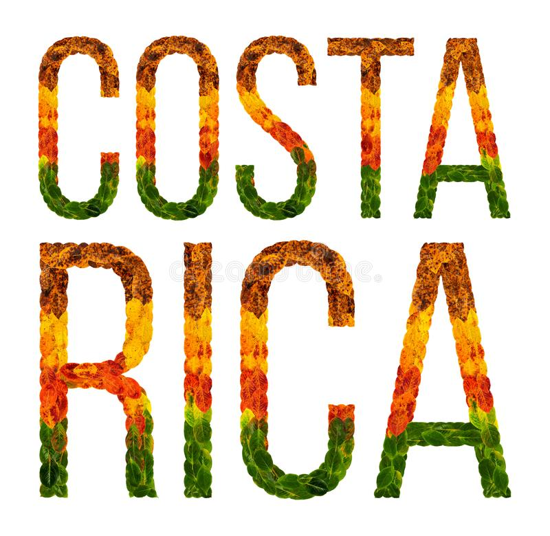 Word costa rica country is written with leaves on a white insulated background, a banner for printing, a creative stock illustration