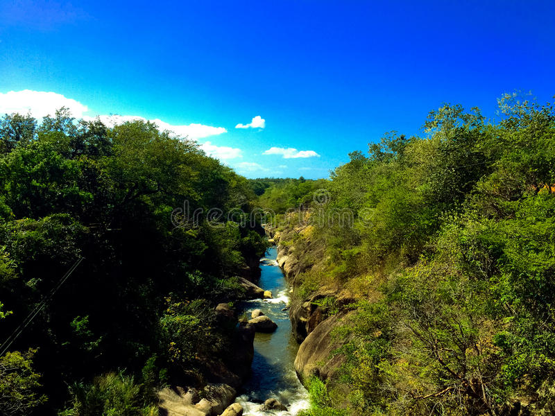 Costa Rican River royalty free stock image