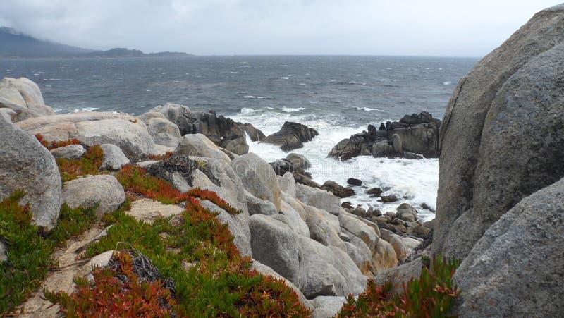 Costa rochosa de Monterey foto de stock