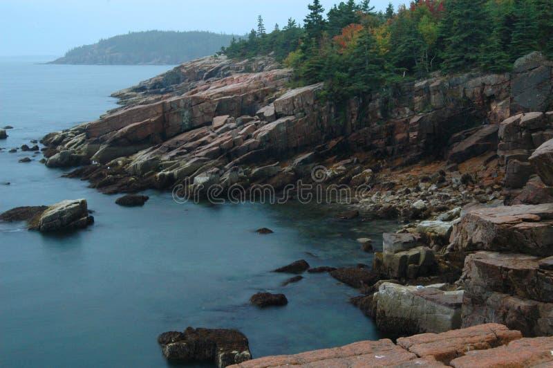 Costa rochosa do Acadia imagens de stock