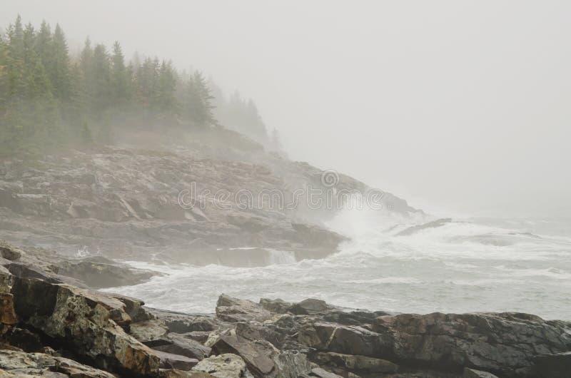 Costa rochosa nevoenta do parque nacional do Acadia imagens de stock