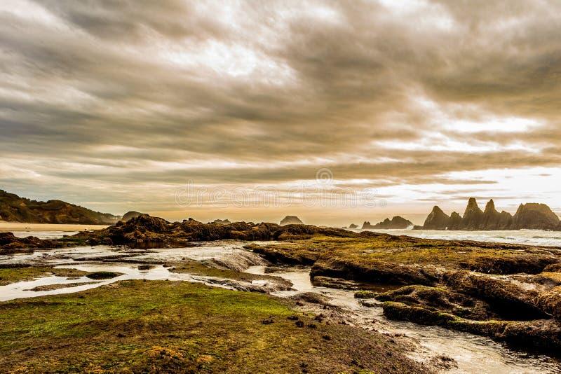 Costa Rocky Landscape dell'Oregon fotografie stock