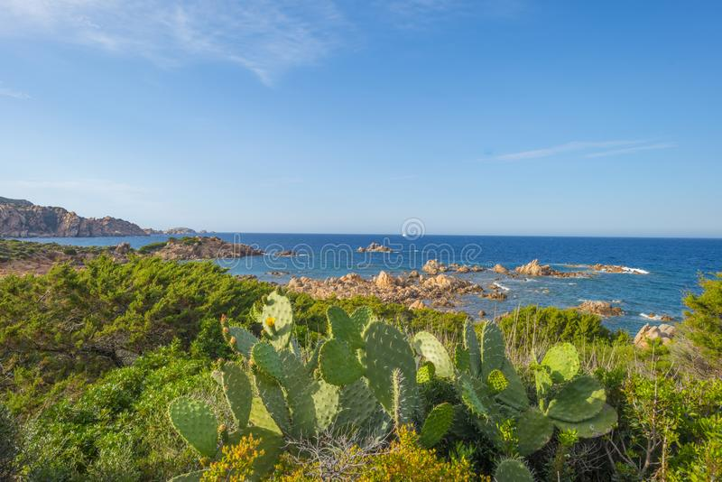 Costa rocosa de la isla de Cerdeña en el mar Mediterráneo en luz del sol imagenes de archivo