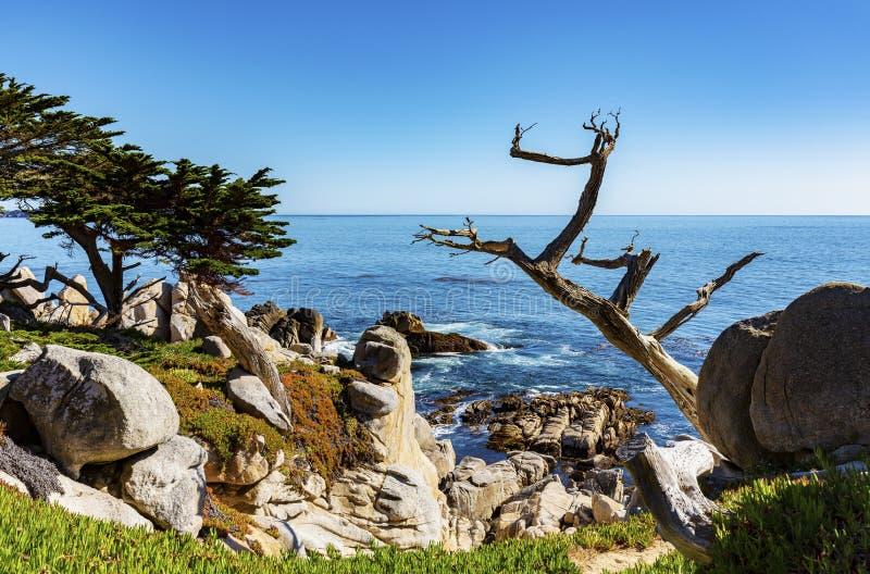 Costa costa rocosa de la costa oeste los E.E.U.U. imagenes de archivo