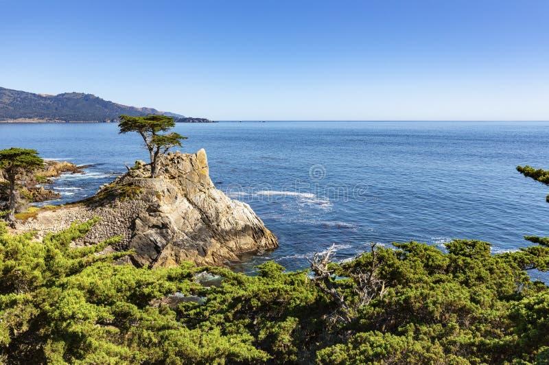 Costa costa rocosa de la costa oeste los E.E.U.U. imagen de archivo libre de regalías