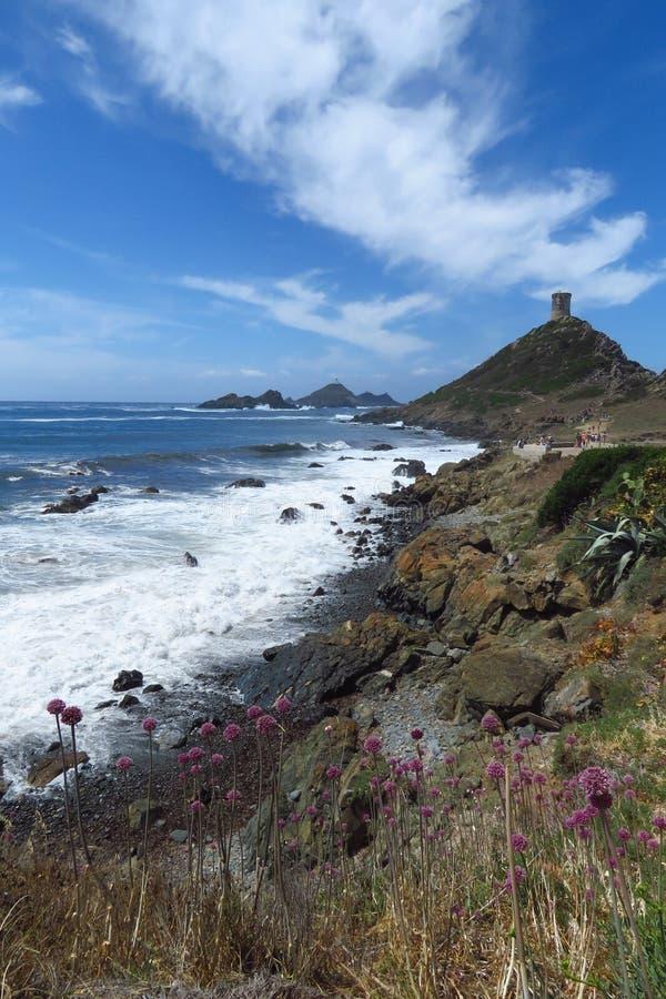 Costa costa rocosa y torre genovese, Iles Sanguinaires, Córcega de Punta de Parata fotografía de archivo