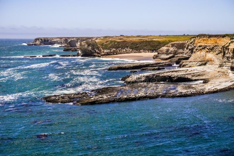 Costa costa rugosa del Océano Pacífico y sellos de puerto que descansan, Wilder Ranch State Park, Santa Cruz, California imagen de archivo