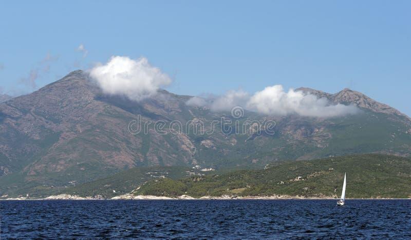 Vineyards in Corsica island. Costa serena vineyard in Corsica island royalty free stock photo