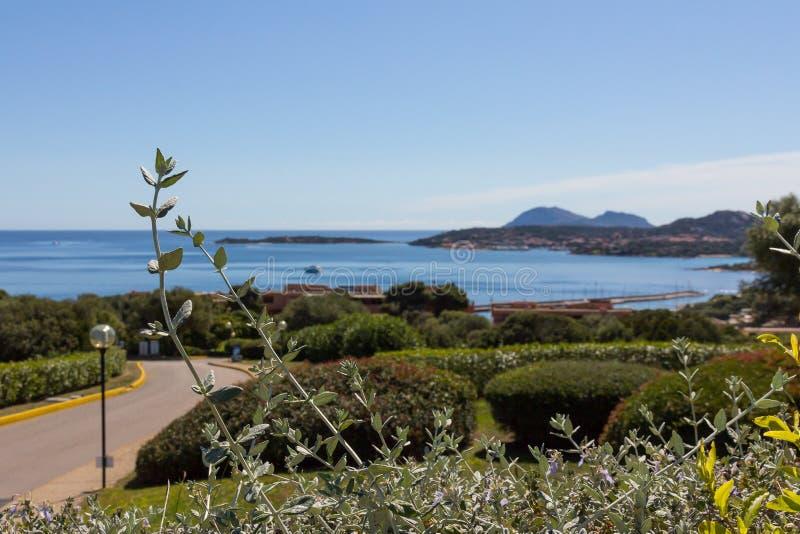 Costa Smeralda landskap med en sikt på havet italy medeltida sardinia f?r aragonese ? torn royaltyfria bilder