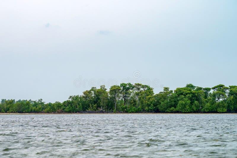 Costa costa tropical con las palmas imagenes de archivo