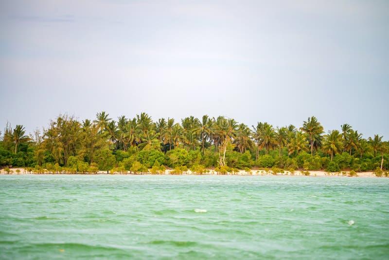 Costa costa tropical con las palmas fotografía de archivo
