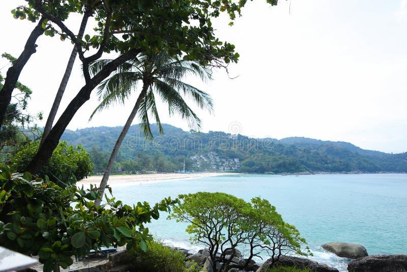 Costa costa vacía con las palmas y la laguna imagen de archivo