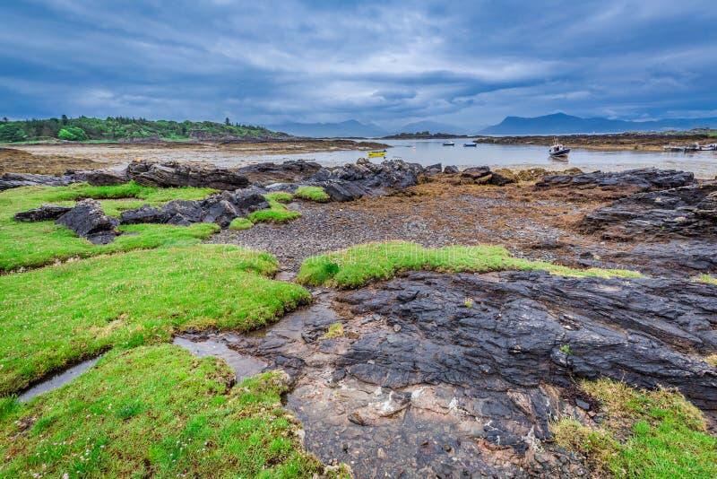 Costa verde en Escocia durante la bajamar foto de archivo libre de regalías
