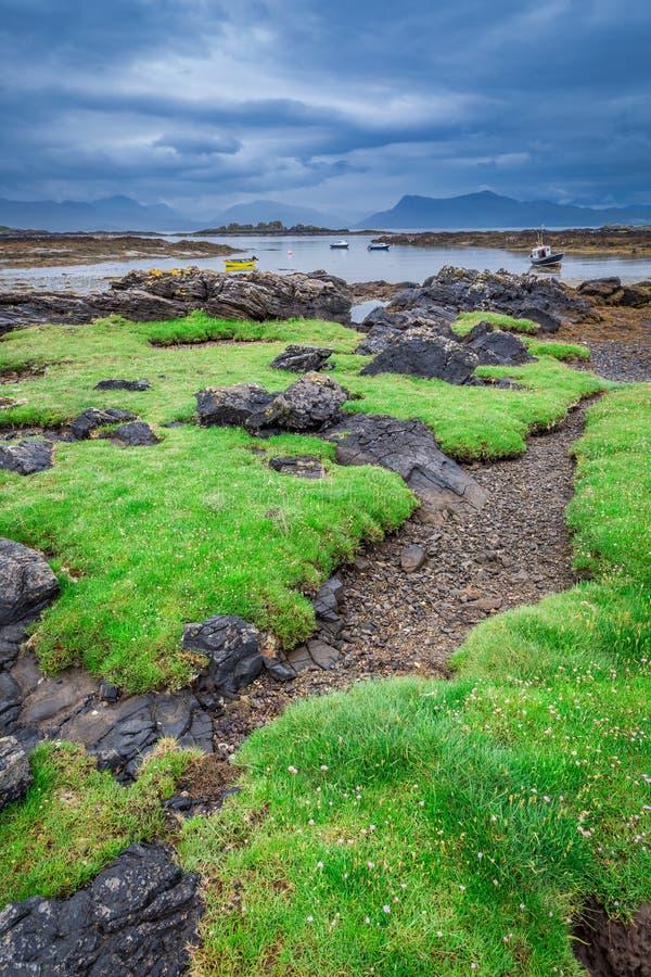 Costa verde en Escocia durante la bajamar en verano fotos de archivo libres de regalías