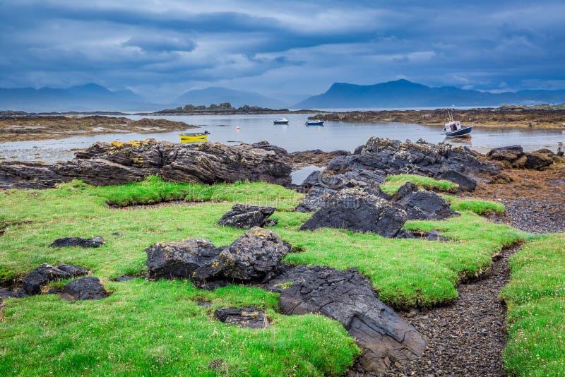 Costa verde y rocosa en Escocia durante la bajamar fotografía de archivo