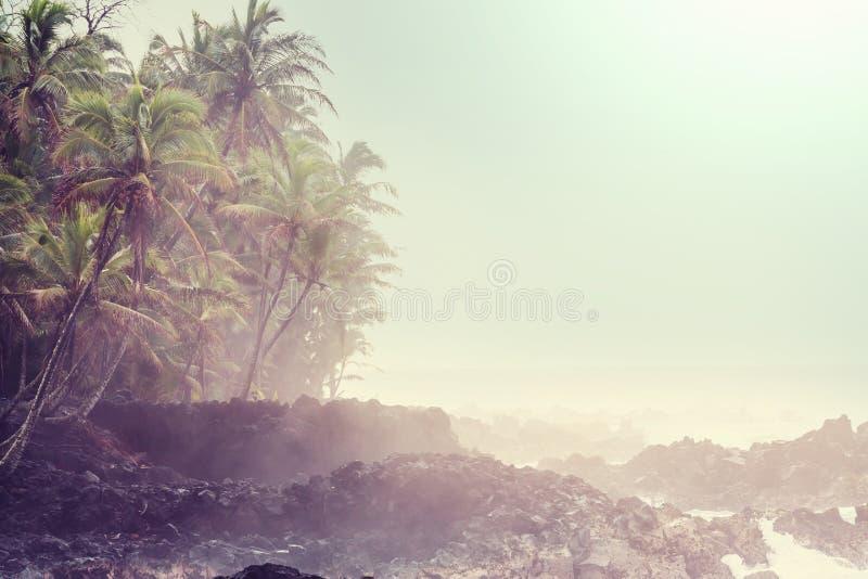 Costa vulcânica havaiana imagens de stock