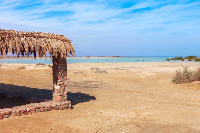 Costa y mangles de Mar Rojo en el parque nacional de Nabq Equipo que bucea - aletas, tubo respirador y máscara Viaje famoso imagen de archivo libre de regalías
