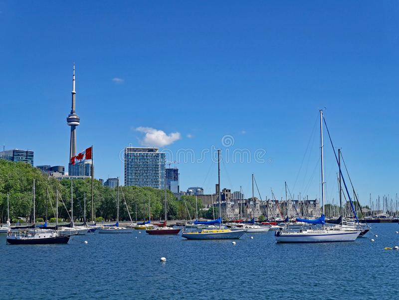 Costa y puerto deportivo de Toronto imagenes de archivo